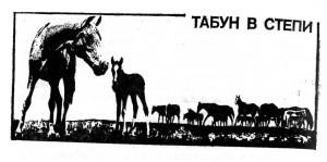 табун в степи