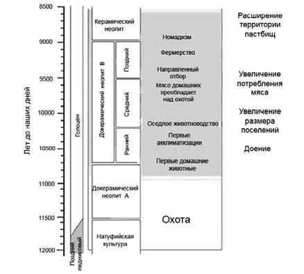 Рис. 24. Этапы хозяйственного развития общества и одомашнивание скота (Vigne, 2011).