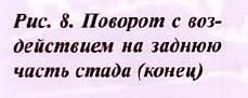 рис 8.1